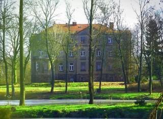 Pałac w Sucharach II